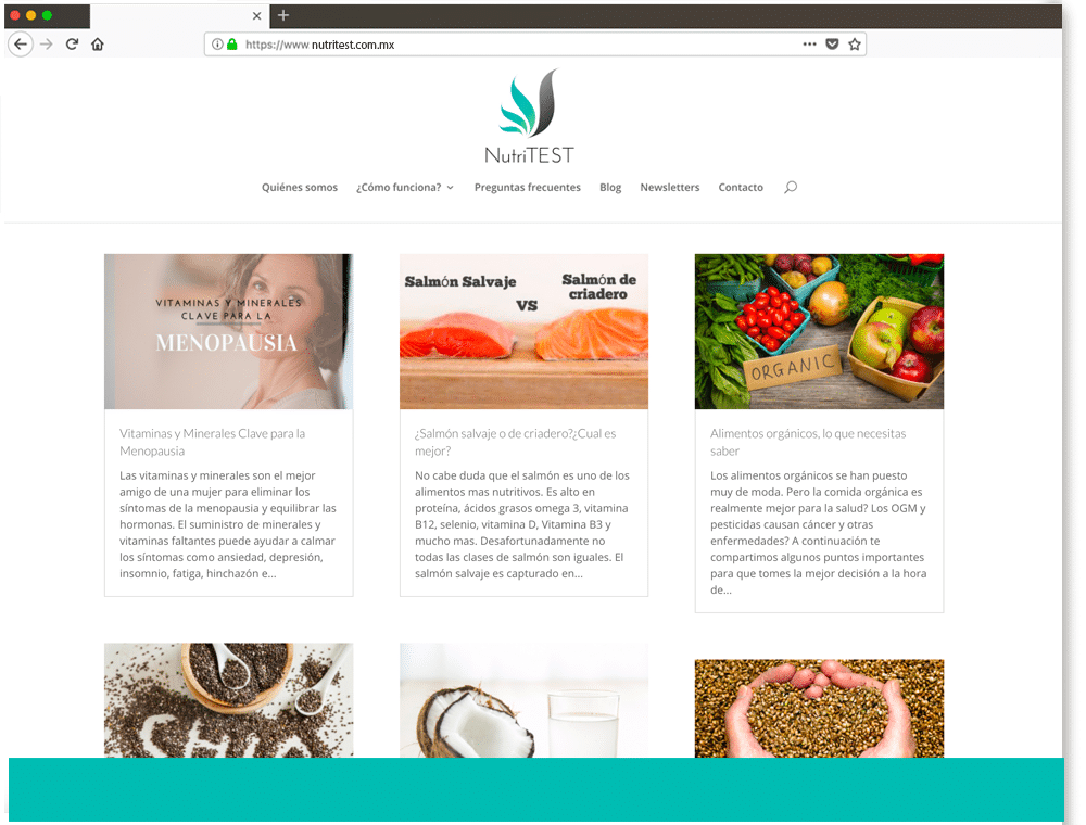 diseño página web informativa