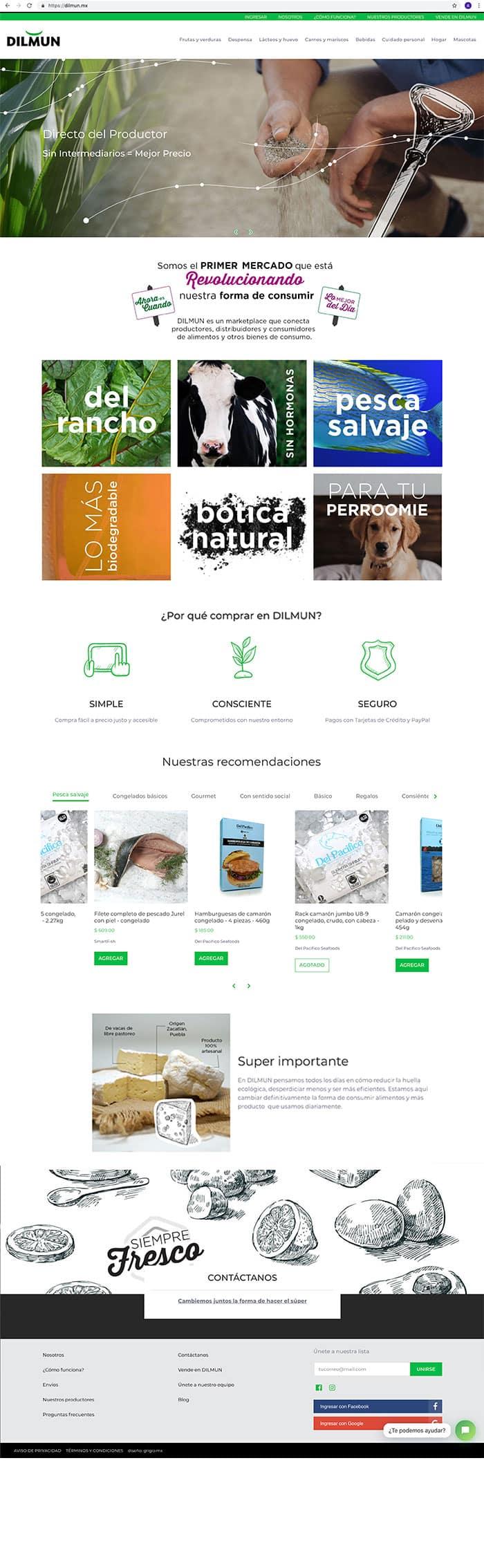 diseño de sitio web eCommerce